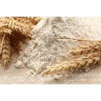All Purpose Wheat Flour for sale thumbnail image