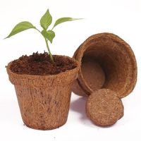 GROW PLANTS IN COCO COIR FIBER POTS