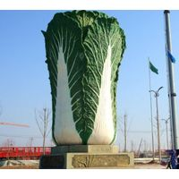 Chinese fresh vegetable Chinese cabbages supplier and exporter