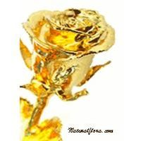 24kt Gold Plated Natural Rose thumbnail image