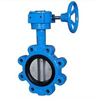 Lug Type Butterfly Valve Cast Iron & Cast Steel Valve