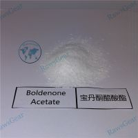 Boldenone Acetate Raw Powder 99.2% Purity