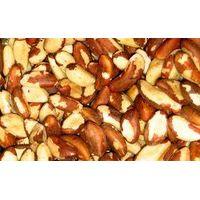 Brazil Nuts   Cashew Nuts  Apricot   Betel Nuts   thumbnail image