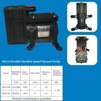 Micro Durable Variable Speed Vacuum Pump thumbnail image
