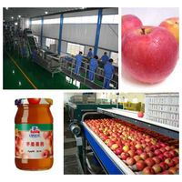 Apple jam production line machine