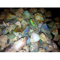 Ethiopian Welo Opals / Top Grade Rough Ethiopian Welo Opals for Sale