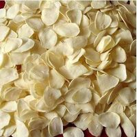 Dehydrated Vegetable Garlic Flakes thumbnail image