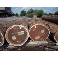 Timber / Lumber / Logs / Sleepers / Flooring / Decking / Pan thumbnail image