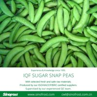 IQF sugar snap peas /Frozen sugar snap peas