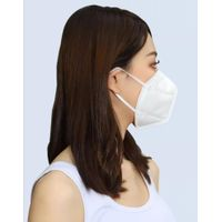 KN95 face mask(50 pieces) thumbnail image