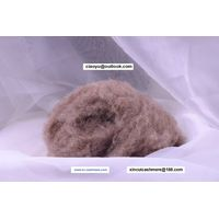 Chiese washed and dehaired natural color camel wool