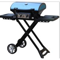 2 burner gas grill barbecue