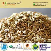 Indian Fennel Seeds
