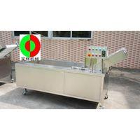 best bubble washing machine 2012, high quality vegetables washing machines,top rated vegetable washi thumbnail image
