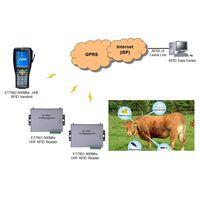 RFID animal identification and tracking