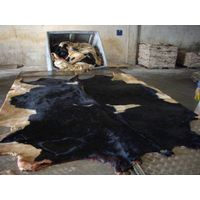 WET SALTED COW HIDES