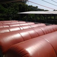 China best quality biogas storage plant