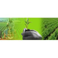 Agricultural Goods thumbnail image