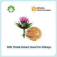 milk thistle herbal extract for kidneys silymarin extract