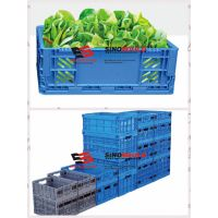 folding plastic vegetable crate-A & B series