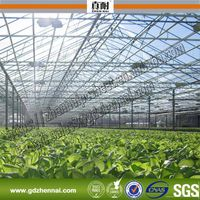 ISO Certification Marolon Transparent Polycarbonate Used in Vegetable Tunnel Greenhouse thumbnail image