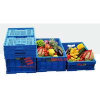 Plastic Fruit & Vegetable Container