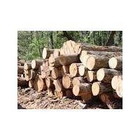 Timber board