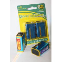 6LR61/9V alkaline battery