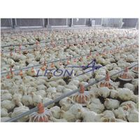 Leon Complete poultry farming equipment with good quality