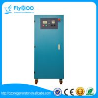 15g Oxygen Source Corona Czone Generator for School Hospital Factory