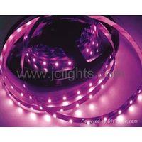 5050 12V/24V flexible led strip light