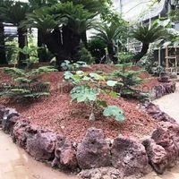 Red Lava Landscape Stone