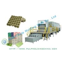 egg tray equipment egg tray machine