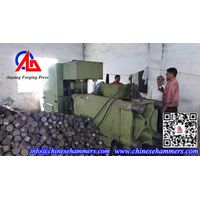 Hydraulic Briquetting Press thumbnail image