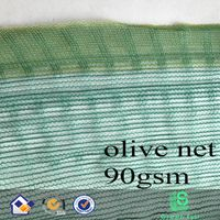 triangle mesh olive net thumbnail image