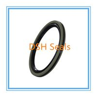 Ptfe hydraulic and pneumatic seals manufacturers China