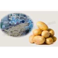 Frozen French Fries Production Line thumbnail image