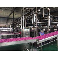 Industrial Belt Type Microwave Food Dyer thumbnail image