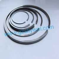 Piston Ring for Locomotives