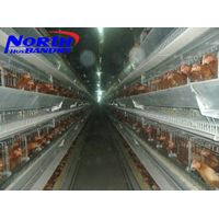 Atomatic Control Poultry Cage/ Chicken House For Poultry Farm