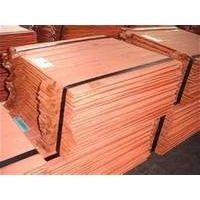 Copper Cathods