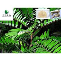 Eurycoma longifolia Jack(sales05@3wbio.com)