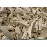 mushroom thumbnail image