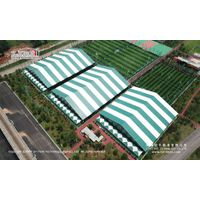 Snow Loading Sport Events Tent for Tennis Court