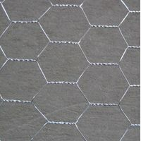 Aping Hexagonal Mesh/Hexagonal Wire Netting