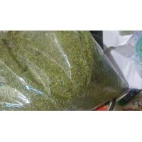 Annual Moringa Tea Cut Leaf Exporters India