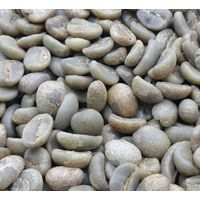 Small Coffee beans Catimor Miel process Espressp