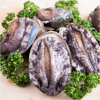 Korean Abalone of healthy king seafood brand by Wando Badamom