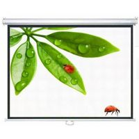 projector bracket projection screen. Video Conference