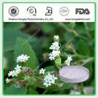 Stevia Leaf Extract 100%pure powder Stevioside 80% 90% 95% thumbnail image